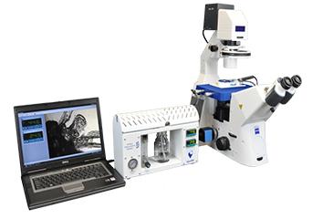 Microscopy 7